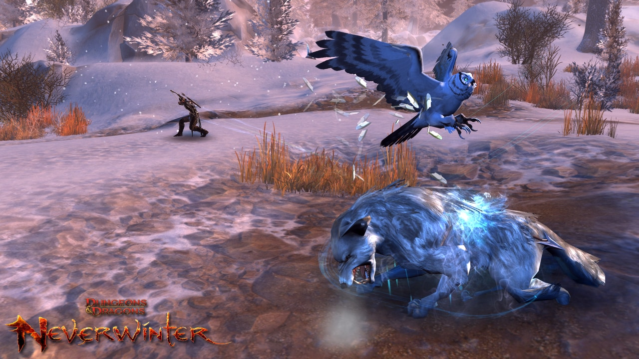 Now Available: Owl Companion and More! | Neverwinter