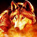 feuerwolf#3519