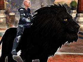 Лев затмения на Базаре чудес!