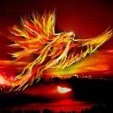 firephoenix#3321
