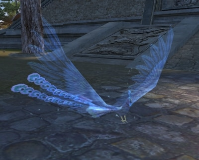 Frost Phoenix, pwi
